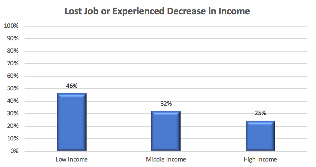 Loss Job or Experienced Decrease in Income Chart